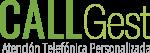 Callgest Logo